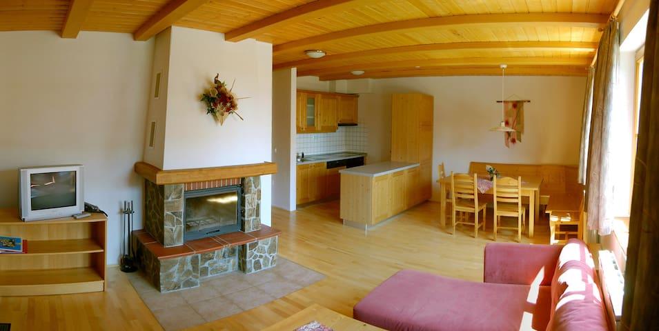 Apartma Bolfenk 2+3 - Hočko Pohorje