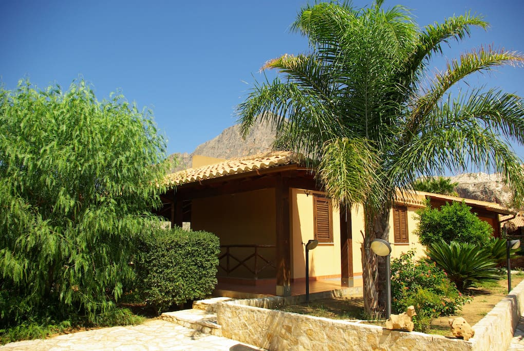 Lato sud, vista giardino con piante di cicas, cocous e falso pepe
