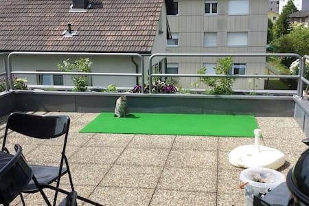 2.5 Dachwohnung mit großer Terrasse - Trimbach