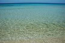 questo è il mare di san lorenzo