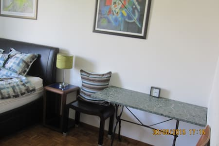 A lovely double bedroom with a most comfortable super kingsize bed, stylish furniture and a view over green gardens and the massif. The best Geneva location: Gorgeous Carouge, full of boutiques, cafes, bars, art, music and culture. 3 min to tram