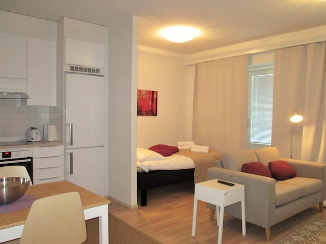 New studio with sauna, city center