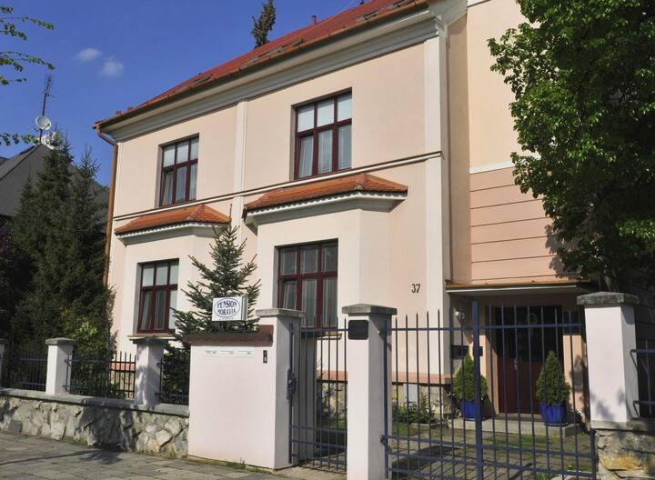 Pension Moravia Olomouc