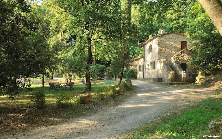 Holiday in an antique farm, Pozzo - Roccastrada - House