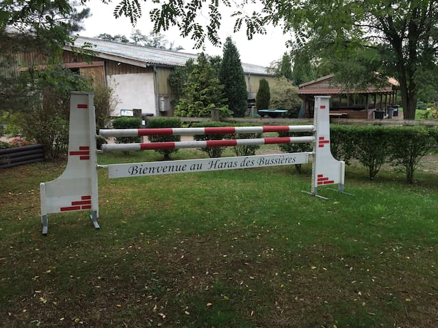 Gîte au coeur d'un centre équestre - Bischwiller