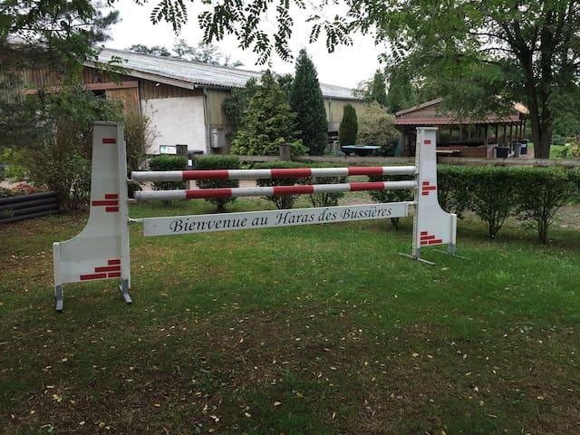 Gîte au coeur d'un centre équestre - Bischwiller - Apartemen
