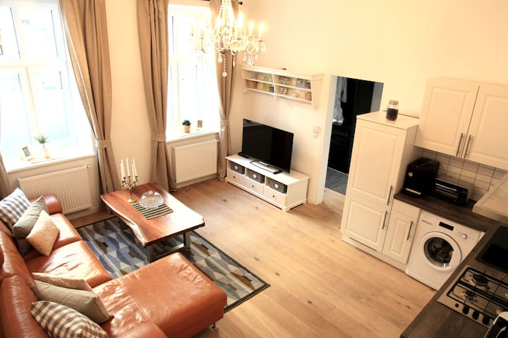 Charming Viennese 1br apartment