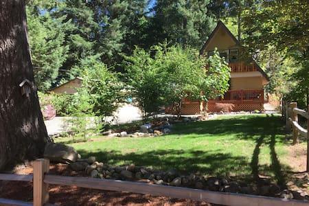 Bear Lodge on Coal Creek - Packwood - Kabin