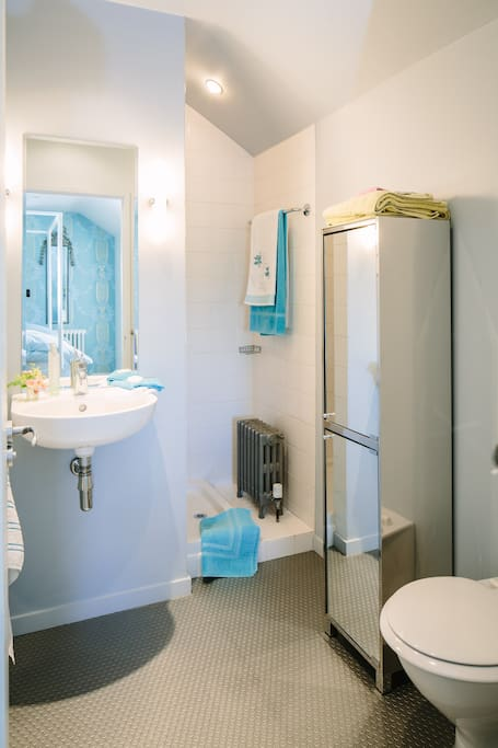 The small but perfectly formed shower room adjoining the aqua bedroom