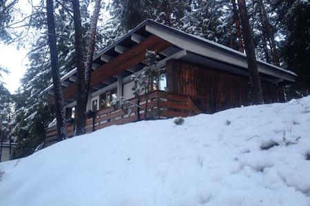 Chalet Enchante' (il tuo rifugio nella natura!!) - Borca di Cadore - Blockhütte