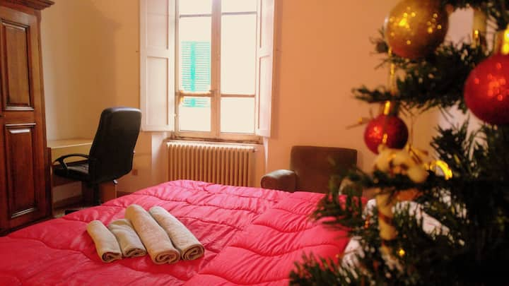 """""""Cozy& Comfy"""" Room at the heart of Historic Center"""