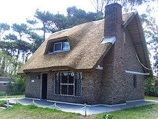 Family house at the beaches - Salinas - House