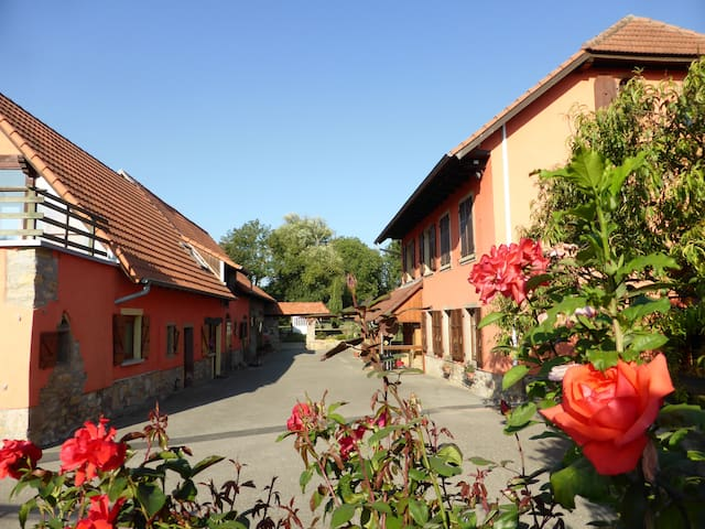 Gite du moulin de la Souffel - Kuttolsheim - Casa