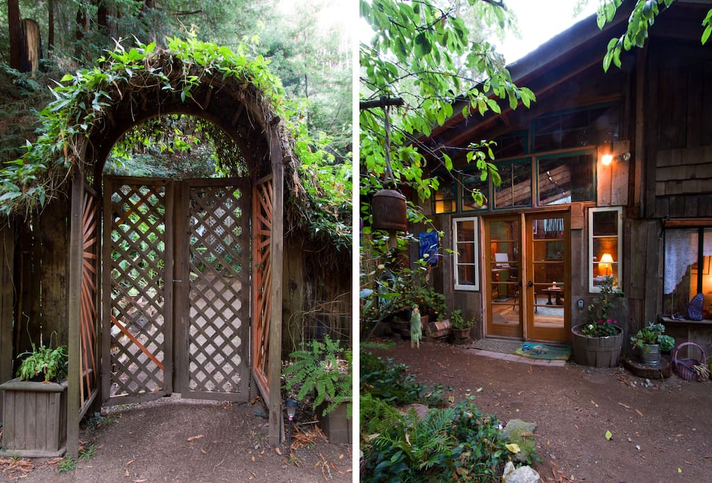 Enter a magical little private garden surrounded by redwood forest.....still with plenty of light
