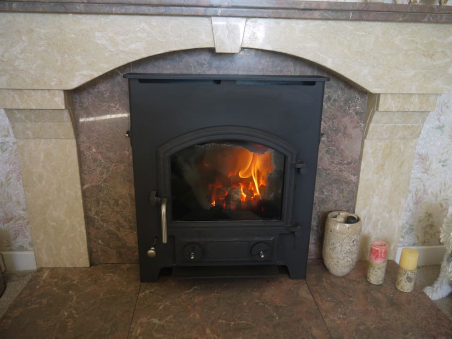 Cosy solid fuel fire