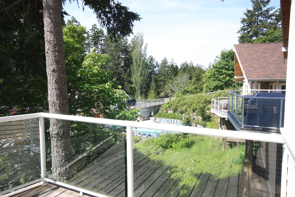 View of the family pool from the deck