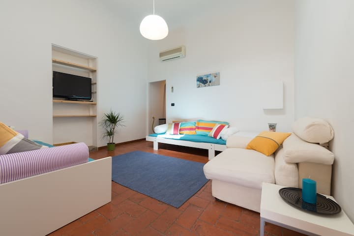 Entire Apartment in Florence Centre