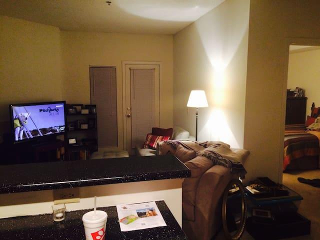 Great location in NE Atlanta - Atlanta - Apartment