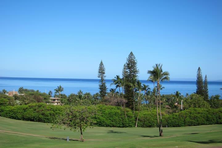 Lahaina Kaanapali Plantation condo