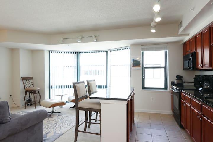 Entire Apartment in Thomas Circle - Washington