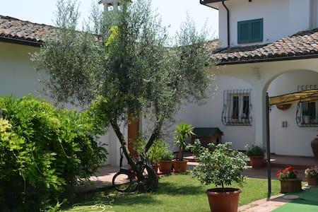 """Dimora della principessa """" aria"""" - Perugia - Bed & Breakfast"""