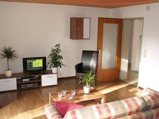 De Roos holiday home 6+ guests - Olsberg - Casa