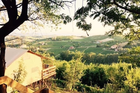 Luxurious lodge tents with pool - Nizza Monferrato - Zelt