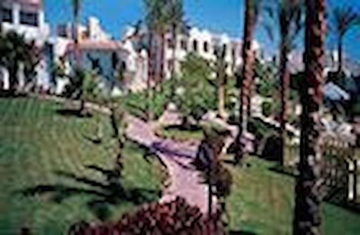 LAST MENIT,   (URL HIDDEN) - Sharm El-Sheikh