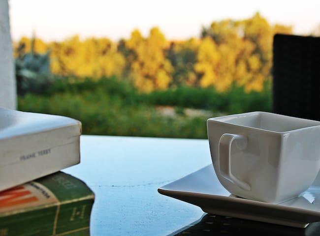 Vistas, piscina, BBQ, Wifi,chimenea - Niebla