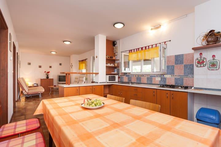 Spacious apartment Morena I - Rovinjsko Selo - Byt