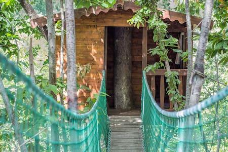 Le 20 migliori case sugli alberi in affitto a umbria su - Airbnb casa sull albero ...
