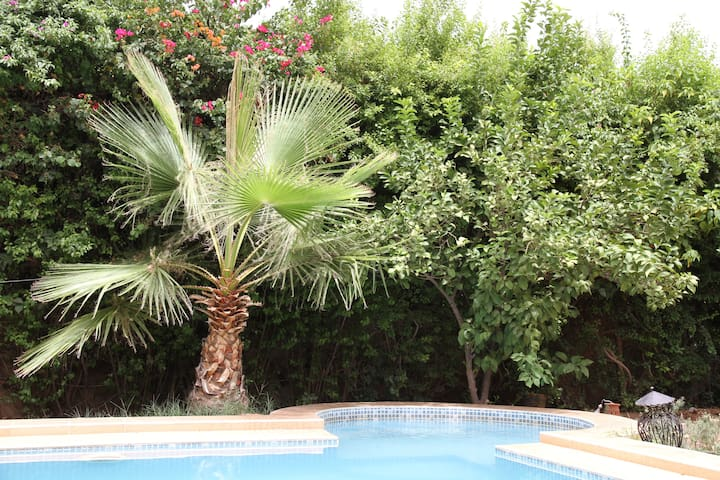 At home - Marrakesh - Bed & Breakfast