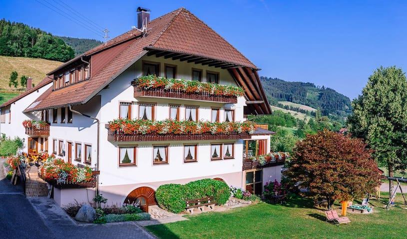 Schiebenrothenhof im Schwarzwald - Simonswald - Appartement en résidence