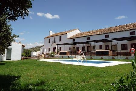 Hotel rural hab. 2 adultos - 皮萨拉 (Pizarra) - 其它