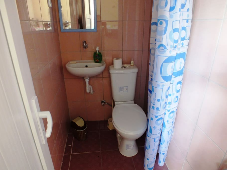 Toilet and shower in the room
