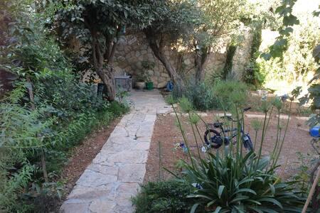 Oasis of calm - Ramallah - Talo