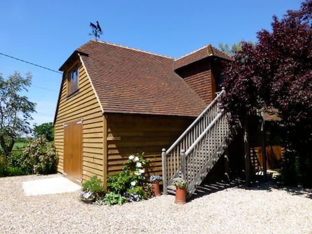 The Shed - A Studio on Romney Marsh - Ashford - Flat