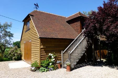 The Shed - Studio on Romney Marsh, glorious walks