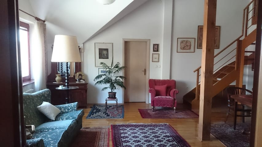 Spacious apartment in the centre - Čakovec