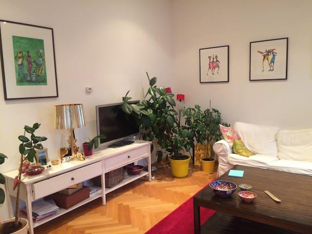 Cosy apartment in the citycenter - Viena - Apartamento