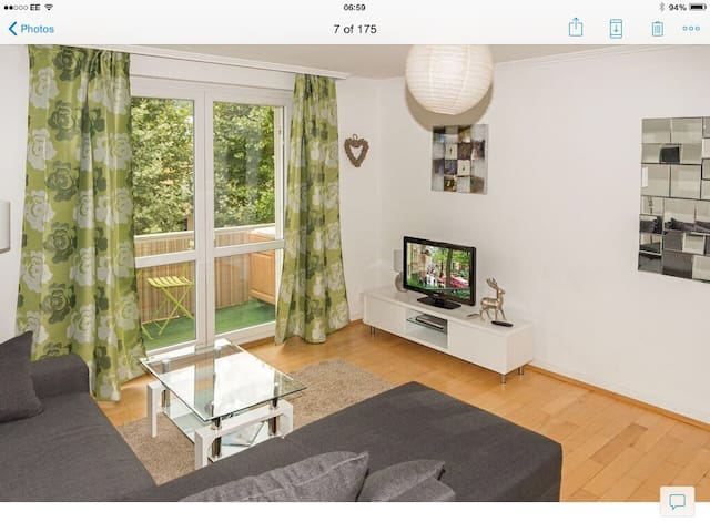 Superb Central  Baden - Baden Flat - Baden-Baden - Apartmen