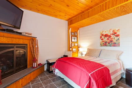 Cozy Apartment in Log Home - Springfield Township