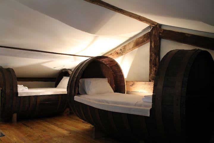 Toneis (2 bedrooms + mezzanine) Rapozinho's Farm