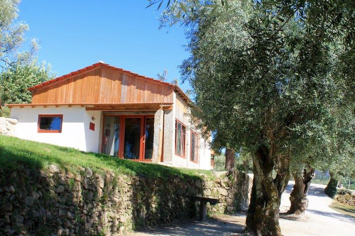 Toneis (2 bedrooms + mezzanine) Rapozinho's Farm - Cabeceiras de Basto - House