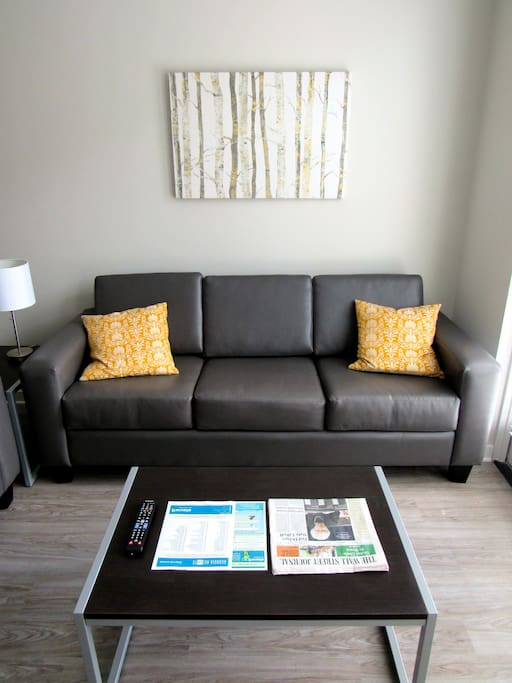 1 Bed 1 Bath Steps From Uga 1 Apartments For Rent In