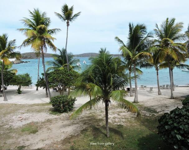 Beach Front Condo-Caribbean Breeze!