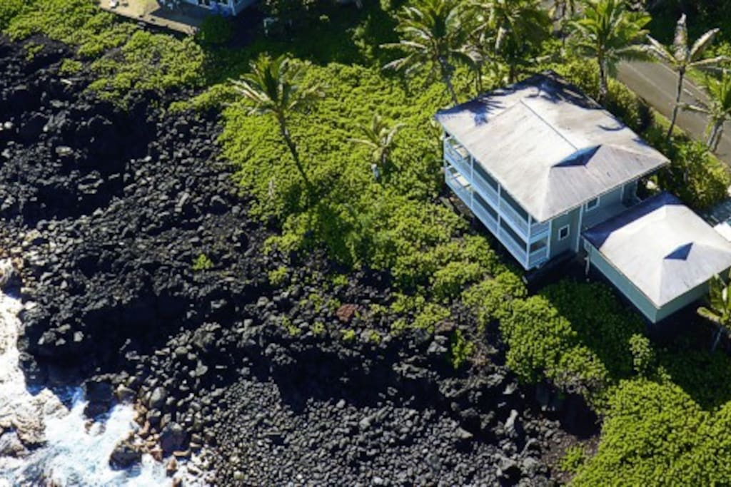 Welcome to Honu Cove - RIGHT on the  water! Watch the turtles, whales, dolphins - whatever might swim by and enjoy the sound of the waves.