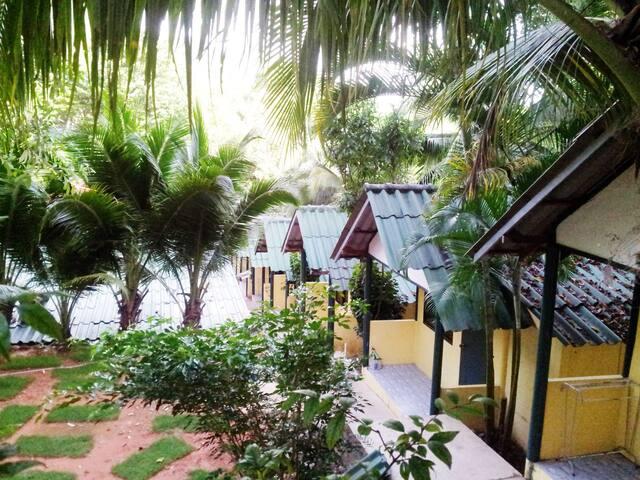 """island lodge"" Whitesand beach, rainforest"