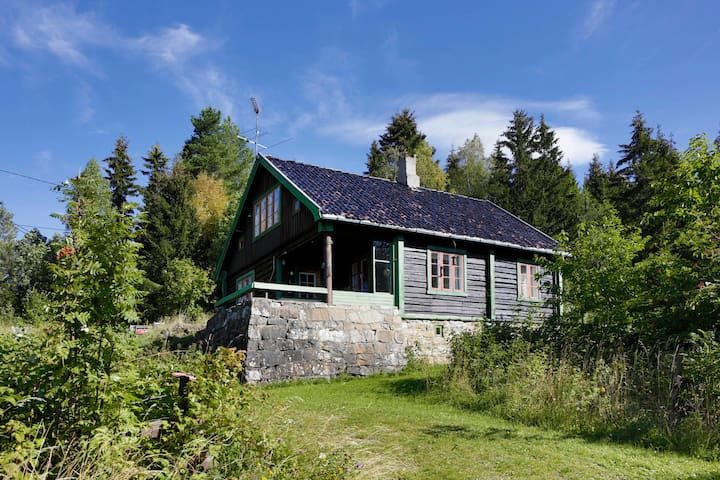 Peaceful cottage only 1 h from Oslo