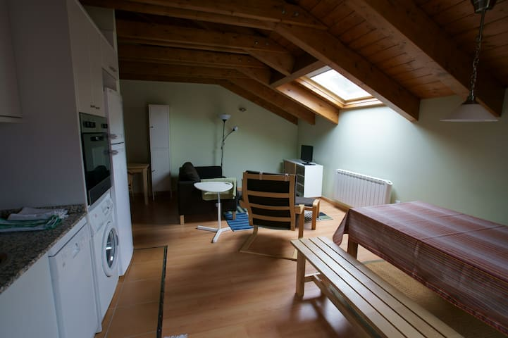 Cozy wodden attic Pirynees 2 double rooms - Castejón de Sos - Appartement